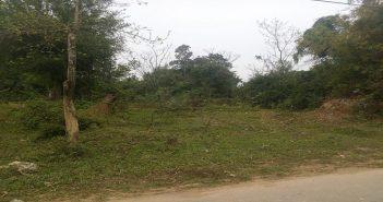 Quyền sử dụng đất được đảm bảo như thế nào