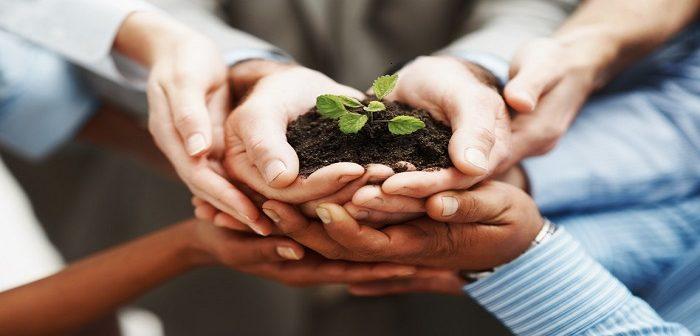 chuyển nhượng thay đổi phần góp vốn