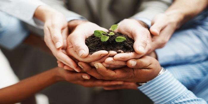 Chuyển nhượng thay đổi phần vốn góp